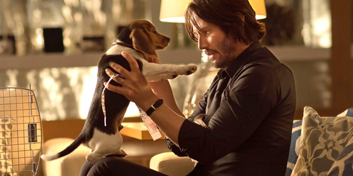 John Wick   Originally, the studio was against the puppy's death